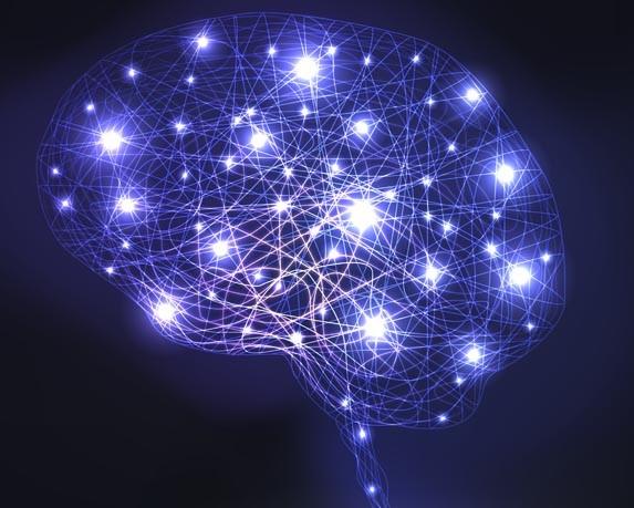 Artistic representation of brain.